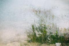 (Slava Olshevskaya) Tags:   water     multiexposition