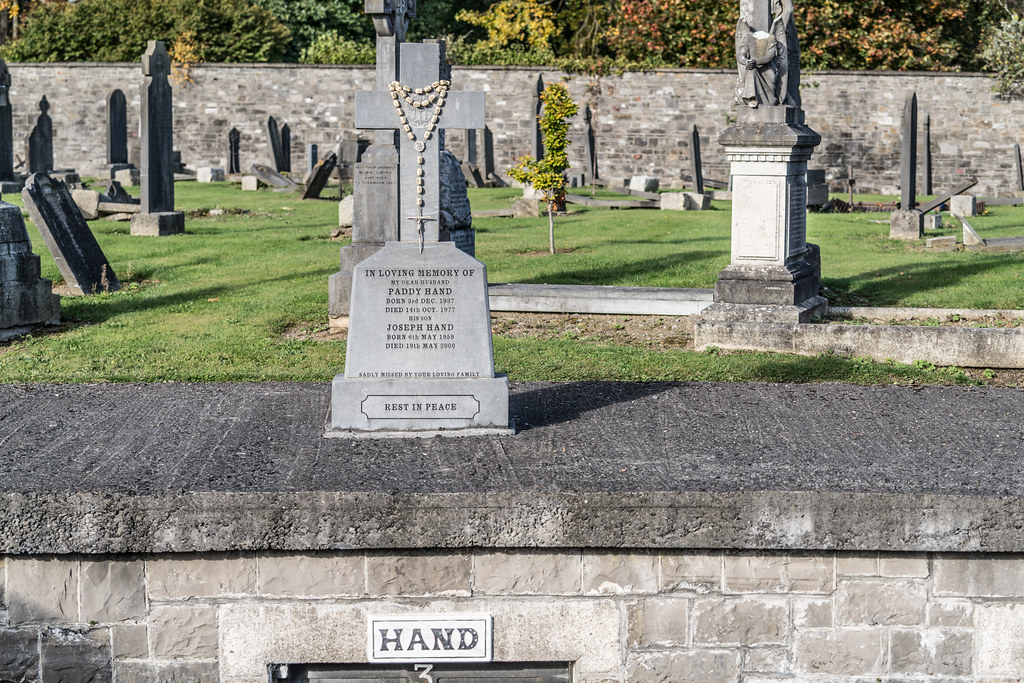A QUICK VISIT TO GLASNEVIN CEMETERY[SONY F2.8 70-200 GM LENS]-122101