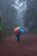 Matheran-4903 (Satish Chelluri) Tags: satishchelluri satishchelluriphotography matheran maharastra umbrella mansoon