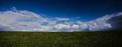 no sheep (rob-cornelisse) Tags: landscape clouds grass sky minimalistic