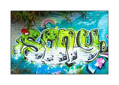 Street Art (Sony), East London, England. (Joseph O'Malley64) Tags: sony graffiti streetart urbanart eastlondon eastend london england uk britain british greatbritain tag throwie wall walls mural muralist wallmural brickwork pointing buddleia aerosol cans spray paint