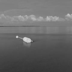 instow tide (jon.capps) Tags: instow northdevon beach eastery lowtide blackwhite monocromatic mono 5x5 mediumformat anseladams markerbouy buoy marker tide appledore devon morning sand mud seascape peace clouds sunrise