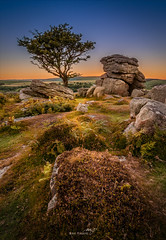 Saddle Tor Lone Tree (Mihai Penghios) Tags: landscape sunset travel tree rocks england saddle countryside hills dartmoor nationalpark devon lonetree saddletor southdevon