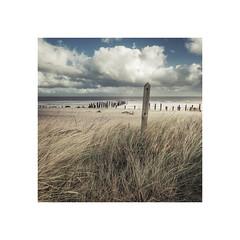 Spurn (Furious Zeppelin) Tags: ©furiouszeppelin ©fz spurn point east yorkshire groynes sea beach storm sand grass post