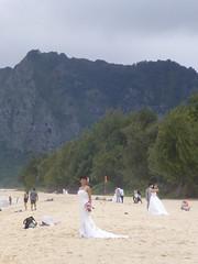 A mile of brides (enjbe) Tags: hawaii brides beach wedding waimanolo
