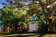 Jackson Park (BobMical) Tags: charlottesville virginia downtown historic district hdr photomatix