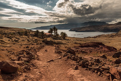 way to oasis (anthony.vairos) Tags: nikon d750 sigma art 24mm f14 manfrotto lightroom photoshop fullframe pleinformat dslr photographie photography photo camera passion beautiful island madre portugal cloud way road palm ocean atlantique rock redrock landscape house desert colors life storm thunderstorm