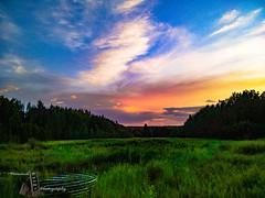 Fieldandsky (Ferintosh Farms Photography) Tags: dusk summer green plains prairie culvert alberta canada