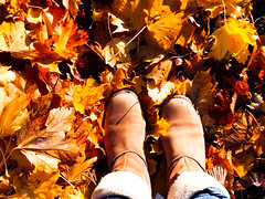 Autumnselfie (Jenne Barneveld) Tags: selfie autumnleaves autumncolors autumn leaves colors colorful catchycolors shoes shoe walking walk olympusem10 olympus