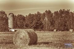 Farm Scene (The Suss-Man (Mike)) Tags: comer farm georgia hay haybale oglethorpecounty old ruralgeorgia silo sonyslta77 sussmanimaging thesussman unitedstates