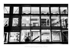 b&w Bibliothek (friedrichfrank1966) Tags: monochrome bw glass windows fenster books night nacht light licht architecture architektur evening kreuztal nrw germany rahmen