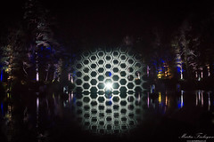 Hexagons (Martin_Finlayson) Tags: enchantedforest scotland night water projection display lights hexagons patterns nikon d600 1835mm tripod lightroom