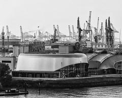 Von Giraffen und Wundern (michael_hamburg69) Tags: hamburg germany deutschland hansestadt hafen harbour harbor krane cranes crane kran lastkran hafenkran giraffen wunder wundervonbern theater monochrome schwarzweiss theateranderelbe