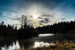 Cloud Play (*Capture the Moment*) Tags: 2016 autumn bavaria bayern deutschland elemente fog forest germany hackensee herbst lake lakehackensee nebel reflection reflections reflexion see sonya7m2 sonya7mii sonya7mark2 sonya7ii sonyfe2470mmf4zaoss wald wasser water wetter