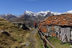 Val d'Aosta - Valsavarenche: vallone di Levionaz, l'arrivo a Levionaz Dessous (mariagraziaschiapparelli) Tags: allegrisinasceosidiventa levionaz vallonedilevionaz pngp parconazionaledelgranparadiso valdaosta valsavarenche autunno camminata escursionismo montagna mountain