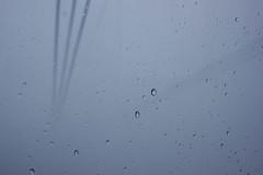 IMG_8540vietnam2016 (MlleJeanne) Tags: vietnam mountain rain drop fog art background