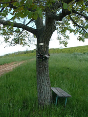 Mnika-pihen (ossian71) Tags: cserht magyarorszg hungary tjkp landscape termszet nature pihenhely rest