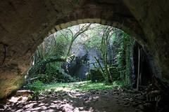 Jungle (Fil de fer) Tags: light green abandoned underground village lumire ivy limestone campagne troglodyte quarry beau parallelworld lierre arche carrire abandonn vgtation
