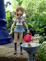 Kirino in the Garden (Sasha's Lab) Tags: flowers girl garden toy outdoors birdbath action frog teen figure sedum watering alyssum lungwor
