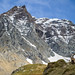 The ibex, the mountain and the plane