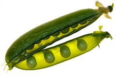 Peas (Harald Schnitzler) Tags: macro nature vegetables pea gemse lebensmittel erbse schnitzler