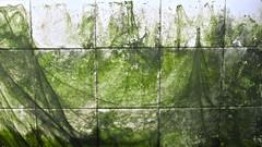 Do Not Obstruct (andressolo) Tags: espaa musgo water spain agua squares fuente galicia fuentes vigo lavadero algas chorro
