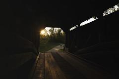 BRIDGE_9303