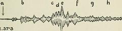 Anglų lietuvių žodynas. Žodis seismogram reiškia seismograma lietuviškai.