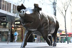 Rundle Pig (StephenMitchell) Tags: sculpture art animal mall pig adelaide brass southaustralia rundle rundlemall ezcreate