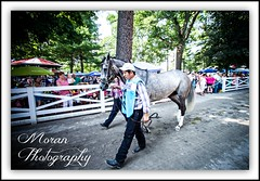 Filimbi (EASY GOER) Tags: summer horses horse ny newyork sports racetrack race canon athletics track photos saratoga competition upstate running racing historic event 7d athletes races sporting spa thoroughbred equine thoroughbreds compete sportofkings