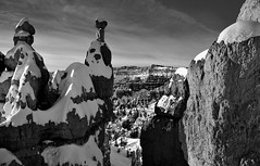 Views at the Beginning of the Queens Garden Trail (Black & White) (thor_mark ) Tags: trees sun nature utah blackwhite unitedstates evergreens bryce brycecanyon day5 hoodoos snowylandscape lookingsouth brycecanyonnationalpark queensgardentrail evergreentree project365 colorefexpro bryceamphitheater diamondclassphotographer flickrdiamond theunforgettablepictures blueskieswithclouds nikond800e easternedgeofthepaunsauguntplateau horseshoeshapedamphitheater