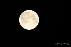 Super Moon (Muhammad Fahad Raza) Tags: pakistan moon canon river eos super fahad jhelum a fastnu jhelumcity supermoon 5dmkiii muhammadfahadraza supermoonpakistan 70300f4056lis