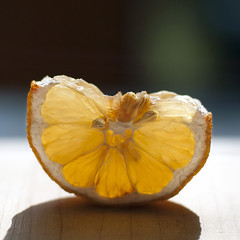 desiccated wedge (subsetsum) Tags: yellow flesh rind lemon seed dry pulp citrus peel wedge pith desiccated