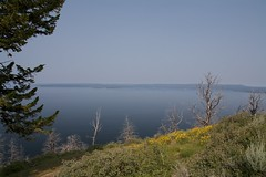 Lake Yellowstone (•Nicolas•) Tags: nationalpark usa america unitedstates yellowstone lake 2014 roadtrip holidays water sky blue nicolasthomas