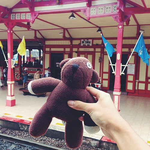 Teddy@Hua Hin Station #vscocam #teddy #thailand #travel #love