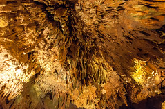 Dixie Caverns 1