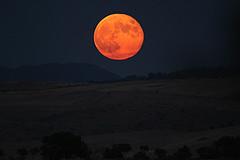IMG_0962 (berserker170) Tags: luna moon 7d eos sigma 150500 noche night flickrexploreme