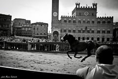 indomitable B&W (LevanteCH) Tags: italy blackwhite italia candid tuscany streetphoto siena toscana palio biancoenero piazzadelcampo contrade candidportraits paliodellassunta tamron18270 d3100 goingcandid
