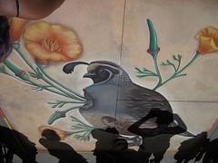 A Partridge at the Pasadena Chalk Art Festival (Robb Wilson) Tags: pasadena partridge chalkart chalkartfestival pasadenachalkartfestival
