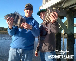 amelia island fishing tours