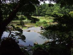 Giappone 2014-08 (Felson.) Tags: park trip travel trees parco lake holiday verde green water japan alberi garden lago tokyo imperialpalace acqua piante viaggio giappone vacanza giardino laghetto  palazzoimperiale giardiniest