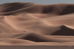 Desolace - Dunes (sadaiche (Peter Franc)) Tags: texture nature landscape sand dunes morocco desolace