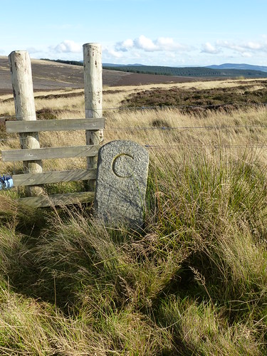 P25 Boundary stone Badingair Hill