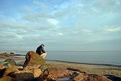 Kahlenberger strand9 (MD Picture) Tags: kahlenberg strand kiel beatch