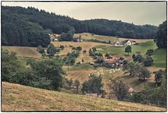 Kinzigtal im Schwarzwald 1 (Babu l'binchou) Tags: allemagne deutchland forêtnoire schwarzwald kinzigtal bollenbach nikond80 nikonaf18200vr col