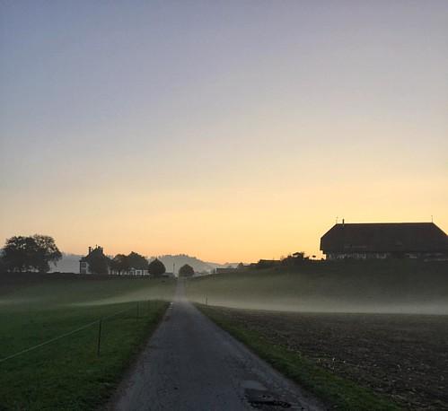 Love those #autumn #mornings