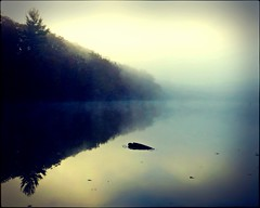 what light breaks (Jo Borlan) Tags: lake morning dawn mist serene tranquil misty trees glassy