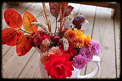 IMG_9467 (sally_byler) Tags: ohio fall autumn bouquet red roses mums chrysanthemums flowers plants leaves outdoors vase pitcher