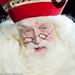 De Grote Sinterklaasshow 2016