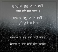 truth vs lie (DaasHarjitSingh) Tags: srigurugranthsahibji sggs sikh sikhism singh sahib satnaam waheguru gurbani guru granth
